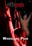 Elite Pain Wheel of Pain 25