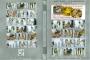 Asian Femdom Japanese Femdom 004 Super Facesitting + Smothering