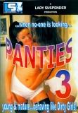 Lady Suspender Panties 3