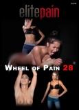 Elite Pain Wheel of Pain 28 - Ganz neu! Kurzzeitreduzierung!