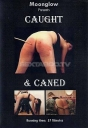 Moonglow Caught & Caned